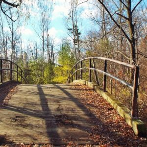 footbridge-autumn-fall-bridge-163827